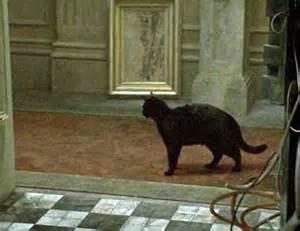 matrix black cat deja vu